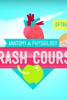 Crash Course: Anatomy & Physiology