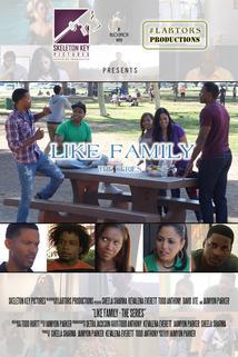 Like Family  - Like Family