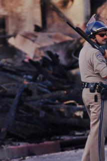 The L.A. Riots: 25 Years Later