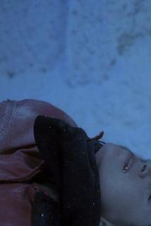 Dr. House - Někdo mrzne, někdo taje  - Frozen