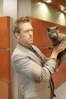 Dr. House - Čiči čiči  - Here Kitty