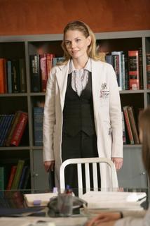 Dr. House - Ochránci  - Saviors