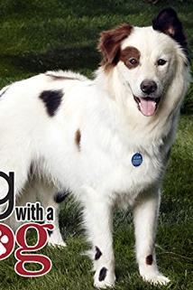 Pes a jeho blog - Avery vs. Teacher  - Avery vs. Teacher