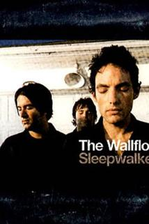 The Wallflowers: Sleepwalker