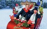 Sám doma a bohatý 2: Vánoční přání