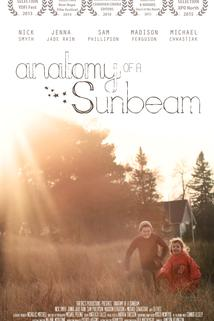 Anatomy of a Sunbeam