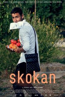 Plakát k filmu: Skokan
