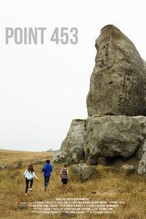 Point 453