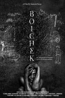 Boichek