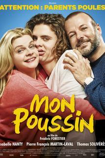Brouček  - Mon poussin