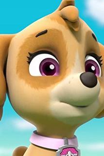Tlapková patrola - Pups Save an Adventure/Pups Save a Surprise  - Pups Save an Adventure/Pups Save a Surprise