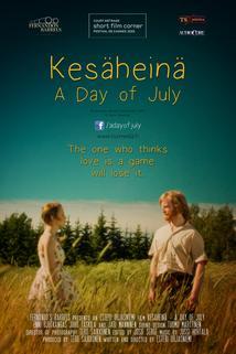 Kesäheinä: A Day of July