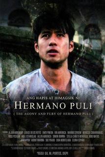Ang hapis at himagsik ni Hermano Puli