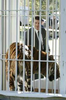 Sběratelé kostí - Doktor v tygřím výběhu
