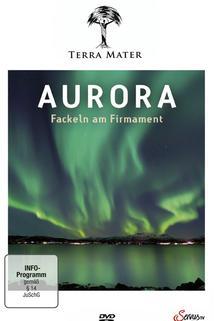 Aurora - Fackeln am Firmament