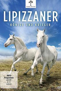 Lipizzaner - Könige und Krieger