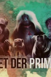 Helden der Tierwelt - Planet der Primaten