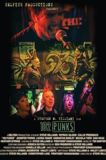 102 Punks