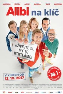 Plakát k filmu: Alibi na klíč