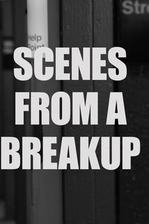Scenes from a Breakup ()