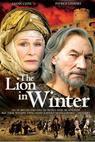 Lev v zimě