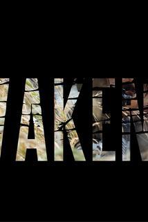 Awakening: Transition of a Soldier ()