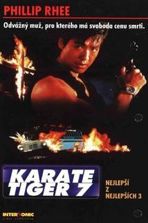 Karate tiger 7: Nejlepší z nejlepších 3 - Není cesty zpět  - Best of the Best 3: No Turning Back