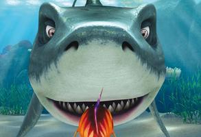 Past na žraloka