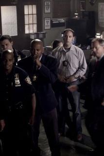 Kriminálka New York - Indelible  - Indelible