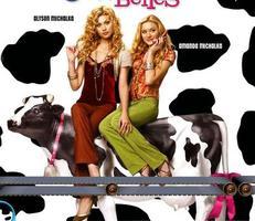 Krásky od krav