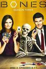 Sběratelé kostí (TV seriál) (2005)