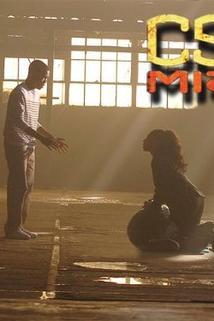 Kriminálka Miami - Rodinná záležitost  - Rock and a Hard Place