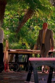 Kriminálka Miami - Napadrť  - Chip/Tuck