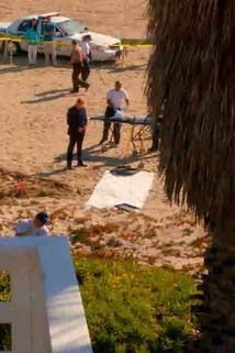 Kriminálka Miami - Rodinný podnik  - Rest in Pieces