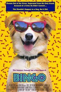 Plakát k filmu: Bingo