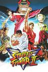 Street Fighter 2, Victory: Volume IX, Final Conflict