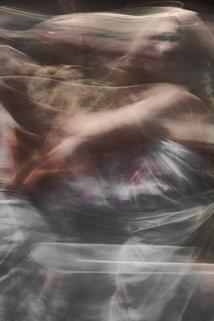 Surrender: the Art of Jan Fabre