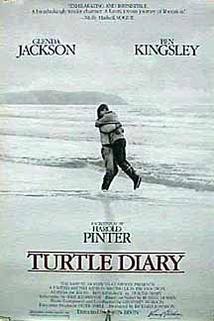 Želví deník  - Turtle Diary