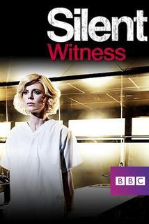 Tichý svědek