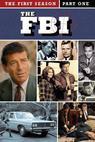 F.B.I., The (1965)