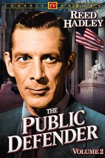 Public Defender  - Public Defender