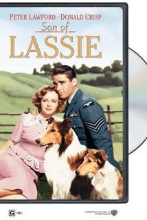 Son of Lassie