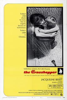 The Grasshopper  - The Grasshopper