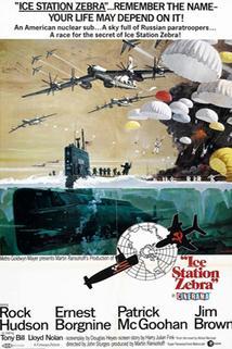 Plakát k filmu: Polární stanice zebra