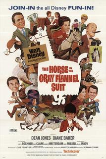 The Horse in the Gray Flannel Suit  - The Horse in the Gray Flannel Suit