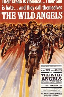 Divocí andělé  - Wild Angels, The