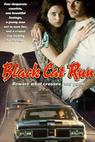 Běh černé kočky
