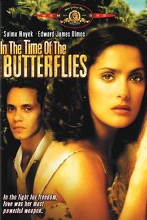 In the Time of the Butterflies  - In the Time of the Butterflies