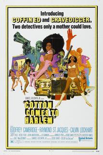 Bavlna v Harlemu