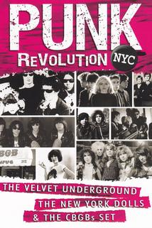 Punk Revolution NYC  - Punk Revolution NYC
